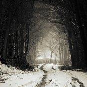 Sneeuw, maar van mij mag het over zijn met die winter
