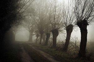 Fotoserie: Een donkere morgen