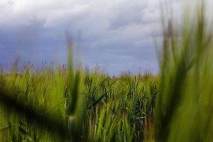 Fotoserie: Hoe mooi Nederland is