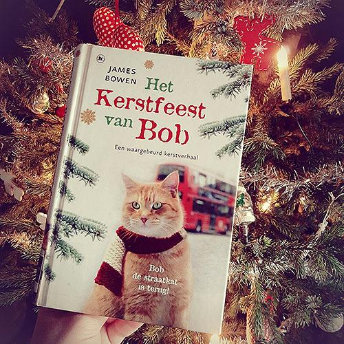 kerstfeest van bob