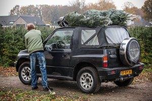 Kerstboom halen Boekel
