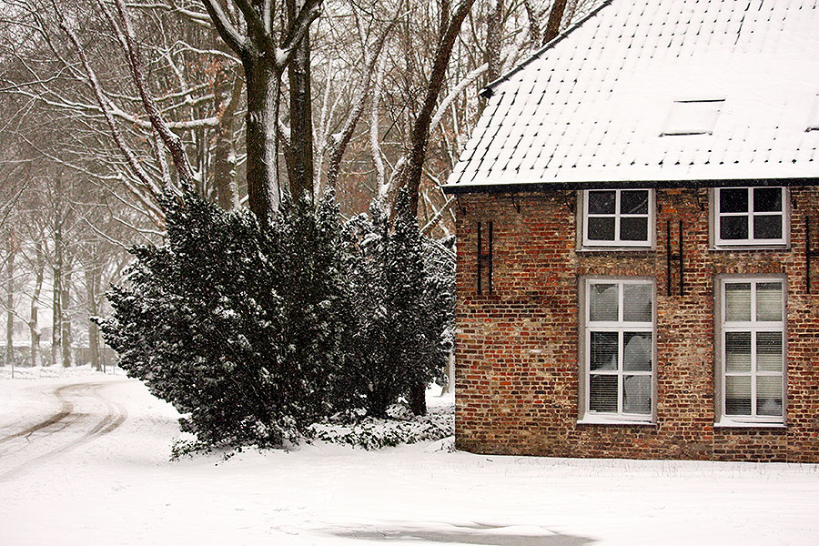 Fotoserie: Nuenen in de sneeuw
