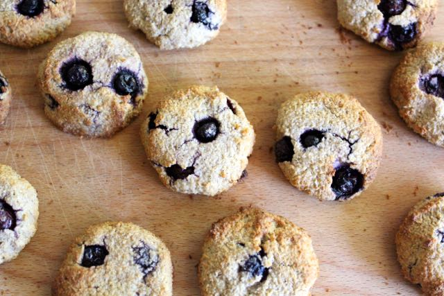 Lemon & Blueberry Cookies (grain-free)