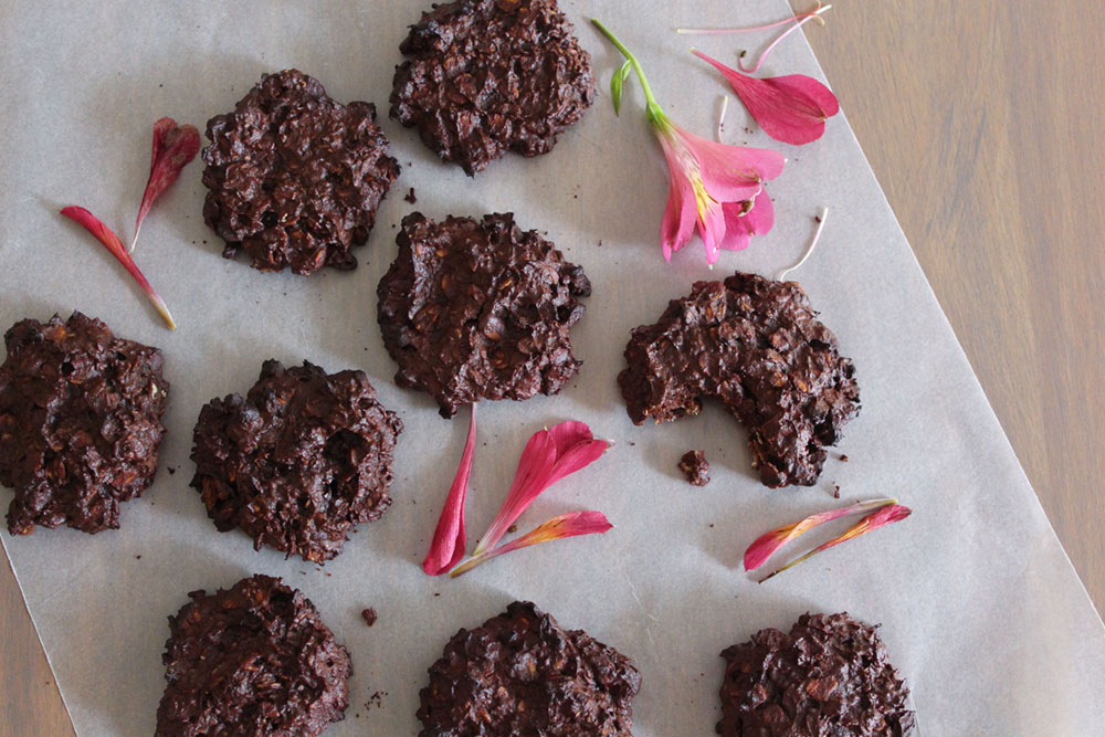 Chewy Chocolate, Oat & Coconut Cookies (gluten-free, sugar-free, dairy-free)