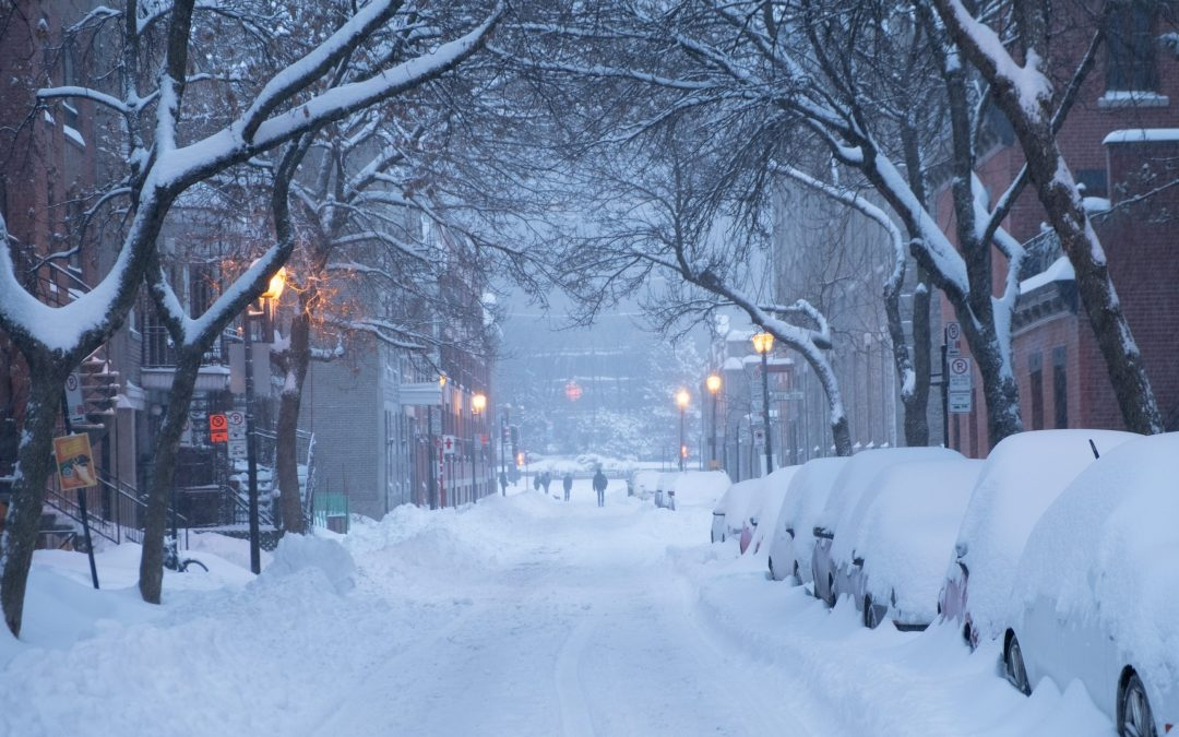 A Plan for Winter: Receive the Gift of Slowdown