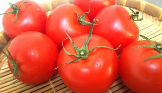 【トマトのカビ対策】カビても食べられる?対処法や見分け方などを紹介!