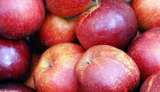 【リンゴが腐る】腐った林檎の見分け方や適切な保存方法を紹介!