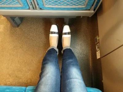 新幹線に犬を持ち込み 座席