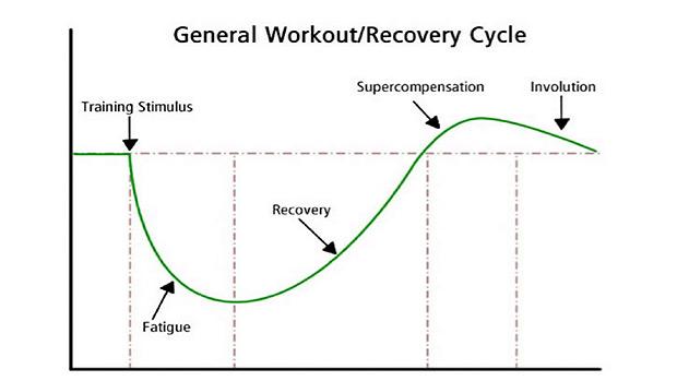 トレーニングをした後筋肉は疲労し一旦曲線は下がりますが、回復を経て超回復が起こります。
