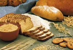 パンはパンでも全粒粉パン。