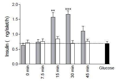 グルコースや炭水化物よりもプロテインの方がインスリン濃度を高くします。