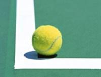 全豪オープンテニス 2016 錦織圭の試合日程?対戦相手の予想と結果?