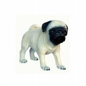 Pug Dog Puppy Lifesize Dog Model