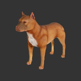Pit Bull Terrier 130009-alba-shed-dinosaurs-direct-lifesize-models-wales