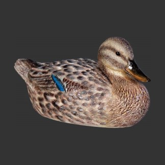 Female Duck 110020