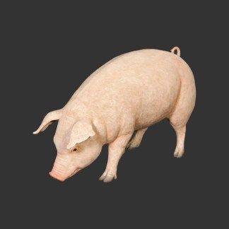 Fat Pig-Realistic-Lifesize-Model