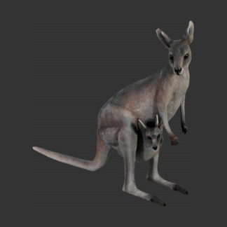 Kangaroo with Joey Realistic Life Size Model