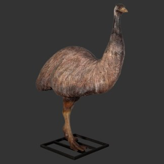 Emu Life Size 3D Realistic Statue