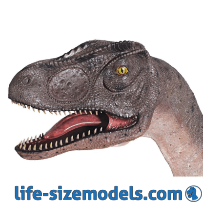Allosaurus Head Mouth Open Realistic Lifesize Dinosaur Head Model