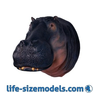 Hippo Head 3D Lifesize Wild Animal Head