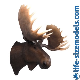 Moose Head 3D Realistic Lifesize Wall Decor