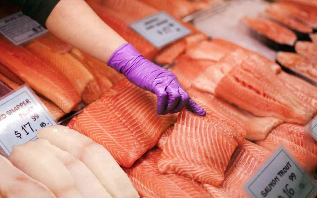 《鮭魚石鍋拌飯》吃飯吃對了養好精氣神!
