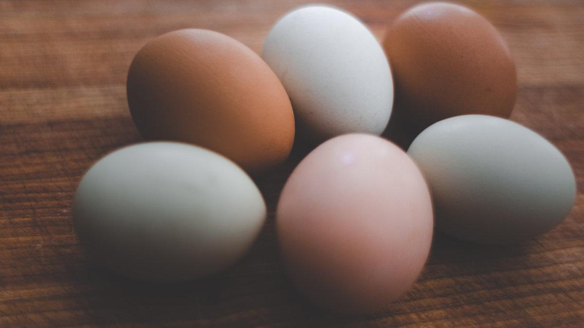 雞蛋殼和蛋黃的顏色會影響雞蛋的營養價值嗎? - 安永生活誌