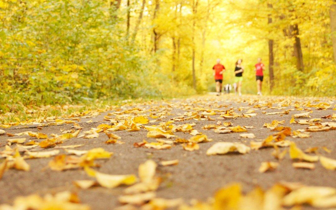 心肺復健助你充滿活力 運動會喘不一定是心臟問題!