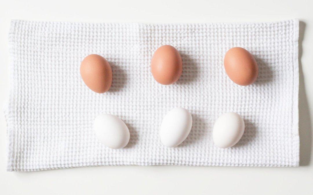老人應多吃肉? 營養師教你阿公阿嬤蛋白質應吃多少