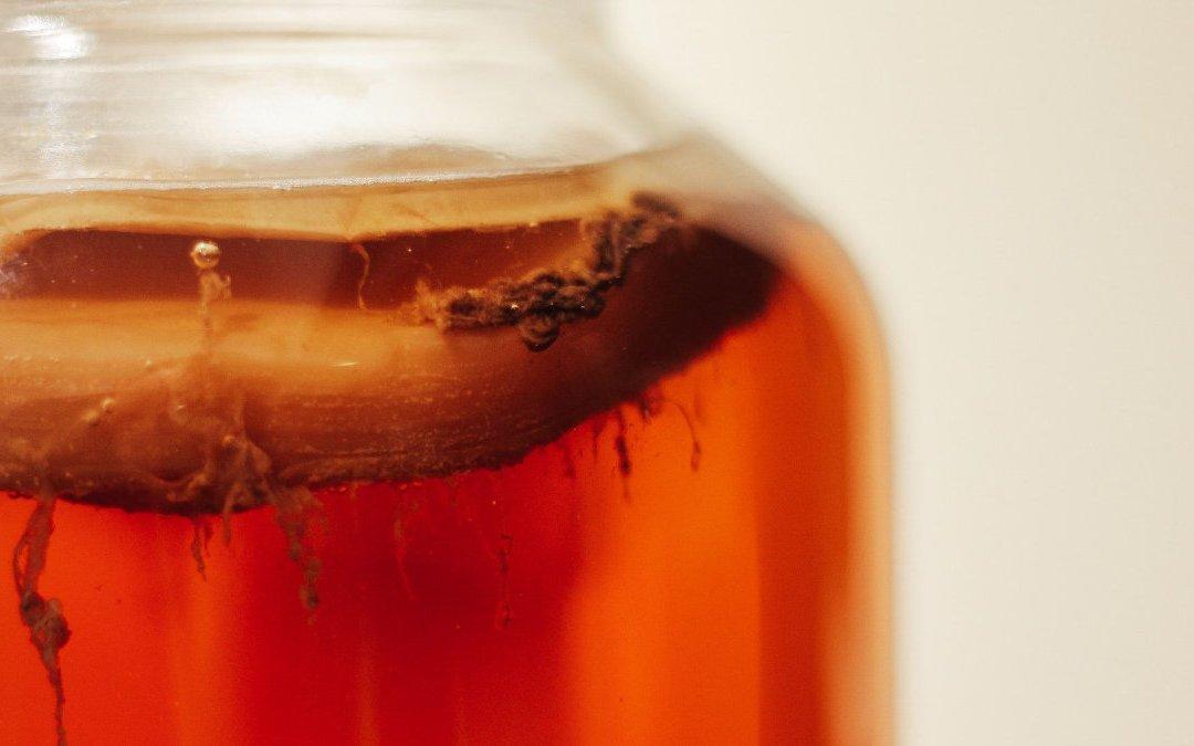康普茶   2 千年前的中國發酵飲料再次流行