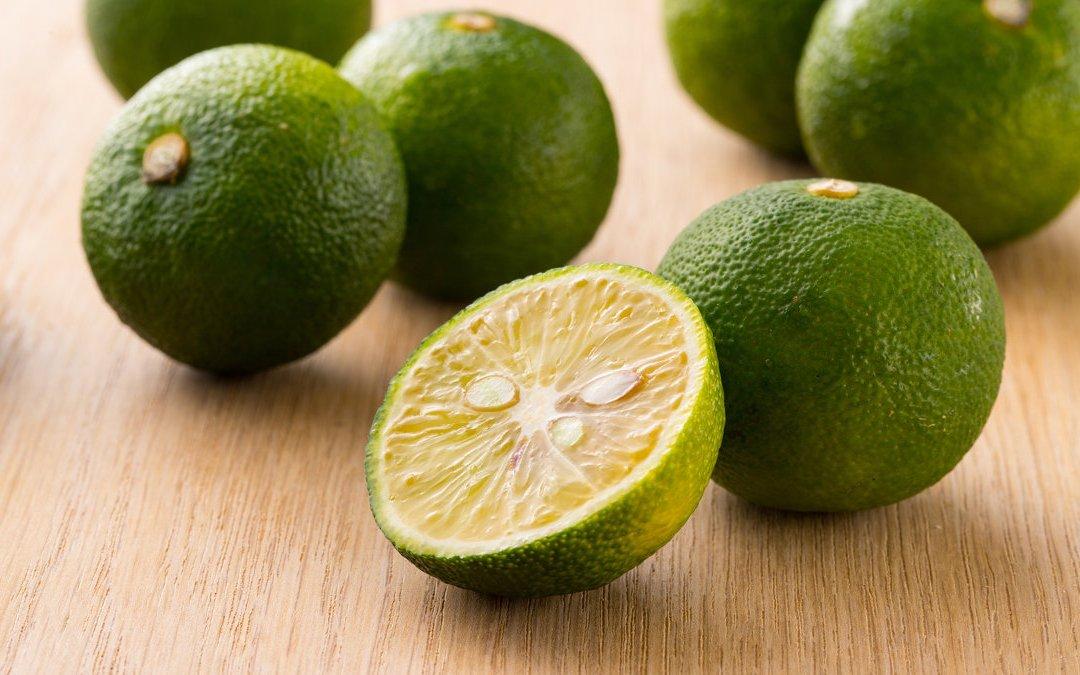 日式調味料的柚子胡椒其實沒有胡椒?