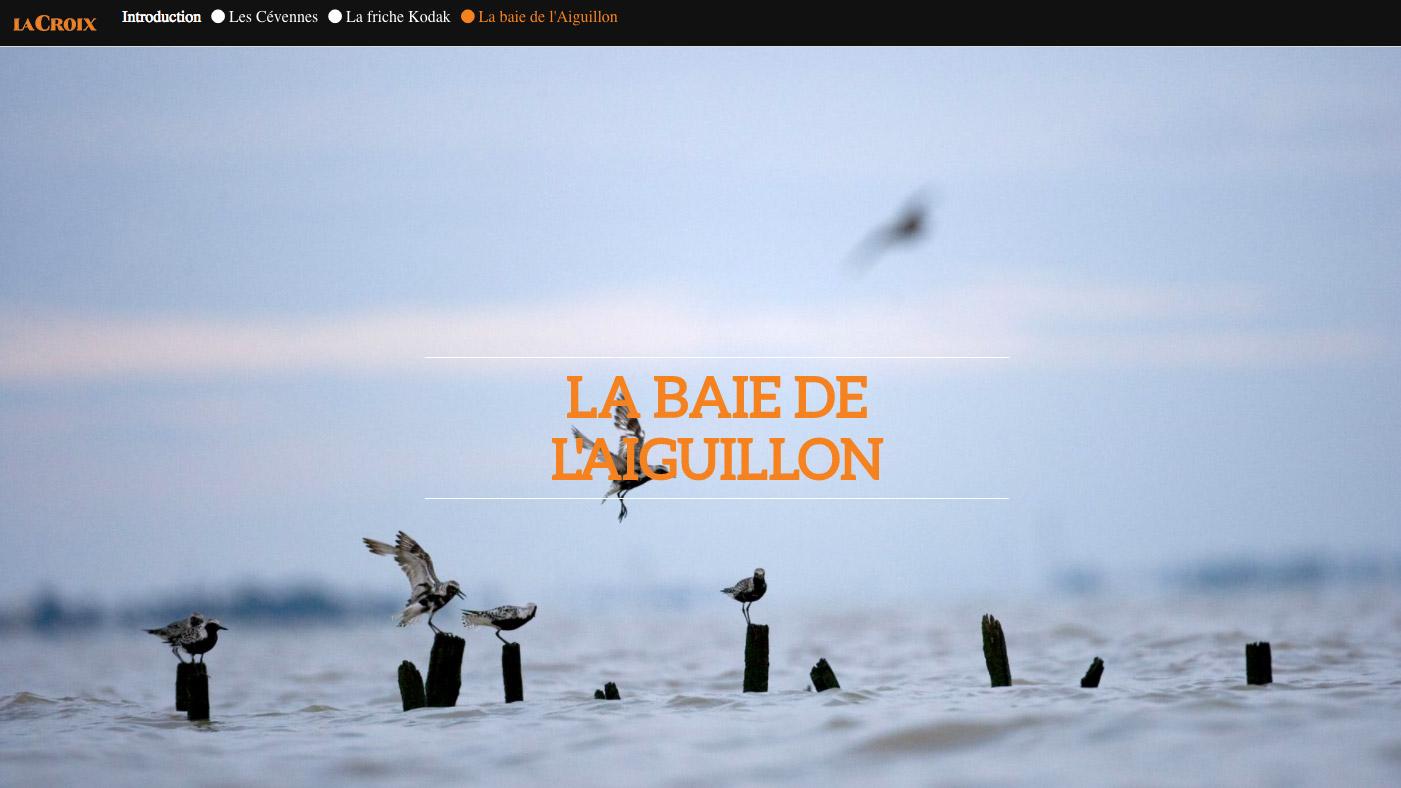 Baie de l'Aiguillon - journal La Croix