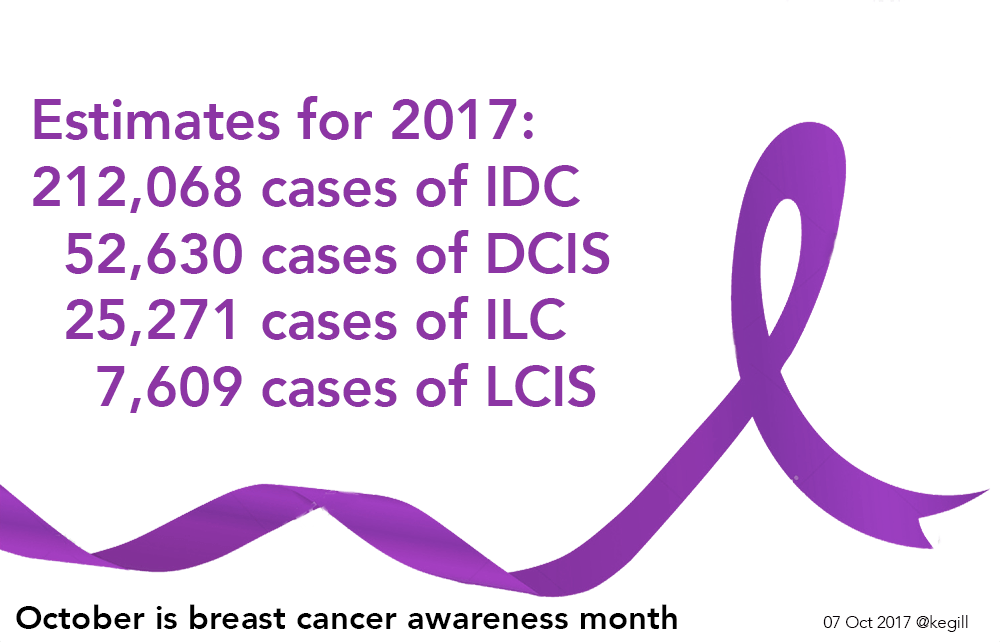 estimates breast cancer 2017