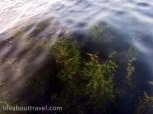 Inle-lake-IMG_1793