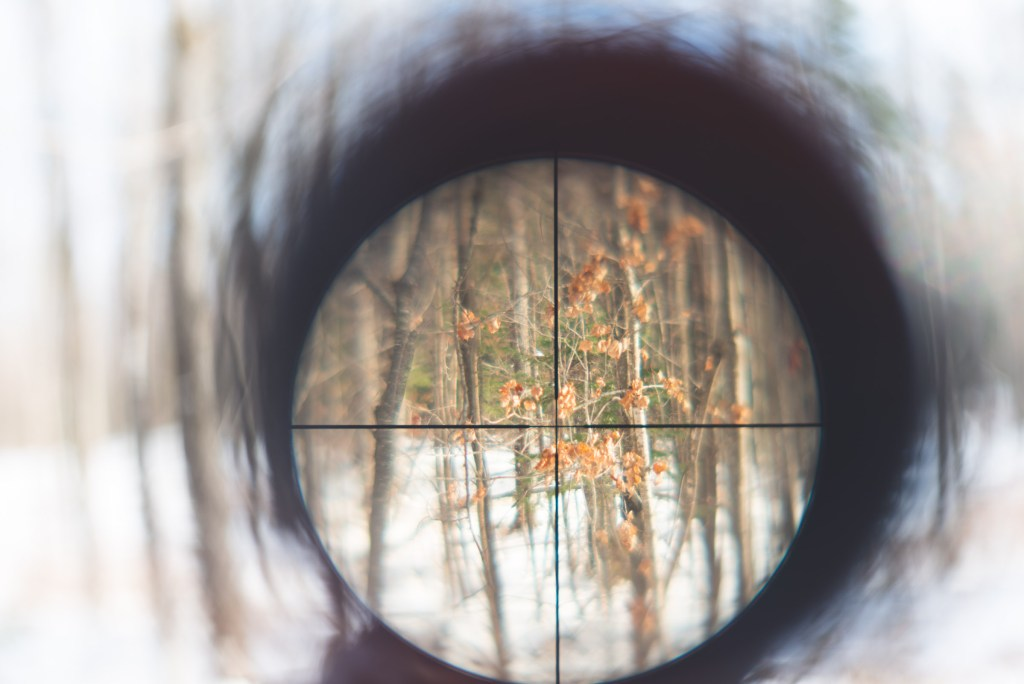 photograph through the sites of a scope looking into empty woods