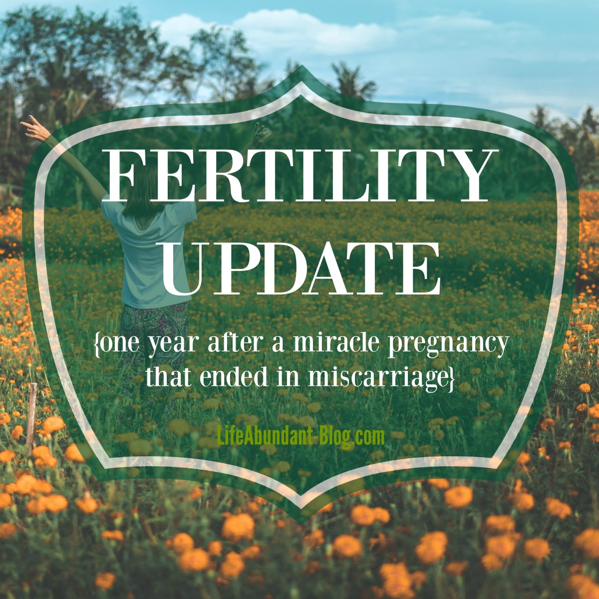 Fertility Update {one year after a miracle pregnancy that ended in miscarriage}