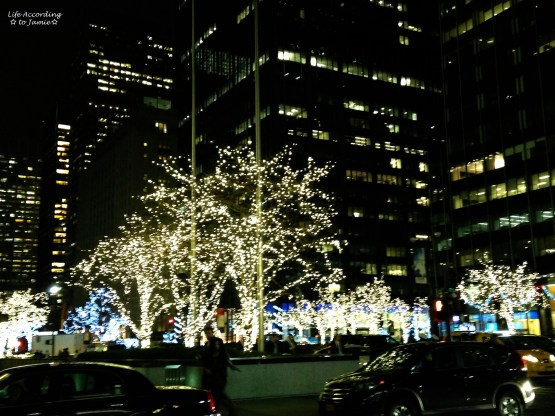 NYC Tree Lines Christmas Lights
