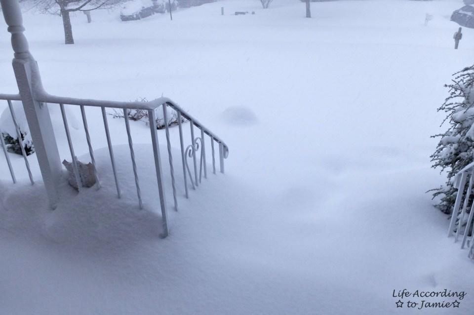 Snowy Front Yard