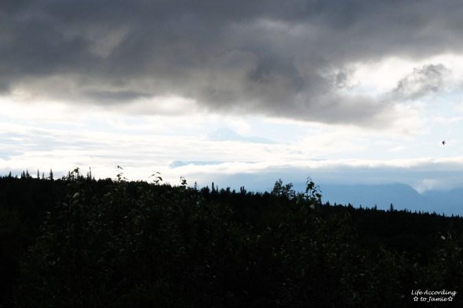 Mt Denali 1