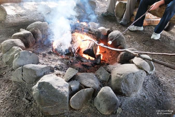Roasting Marshmallows - Denali