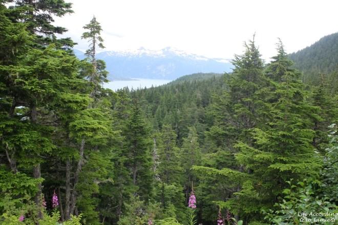Takshanuk Mountain Trail  2