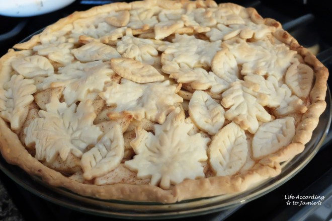 apple-pie-leaf-cutout-crust-4