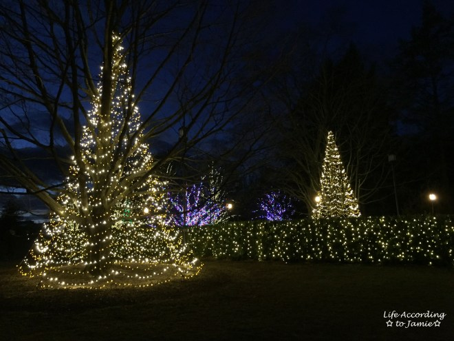 longwood-gardens-christmas-lights-1