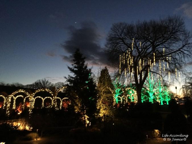 longwood-gardens-christmas-lights