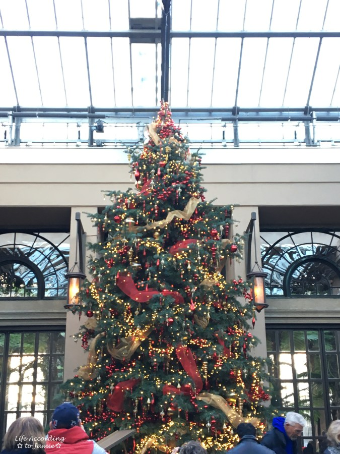 longwood-gardens-conservatory-christmas-tree