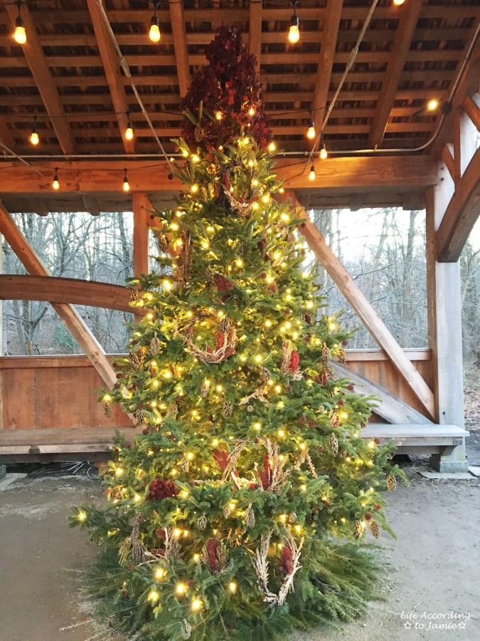 longwood-gardens-outdoor-christmas-tree