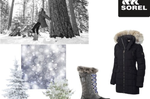 tame winter with sorel