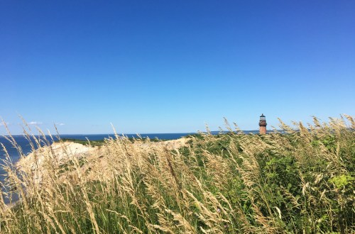 Aquinnah Cliffs - Martha's Vineyard