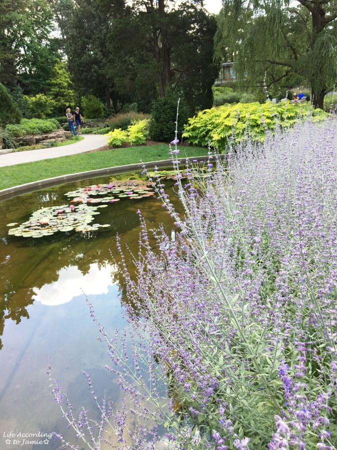 Royal Botanical Gardens - Rock Garden 5