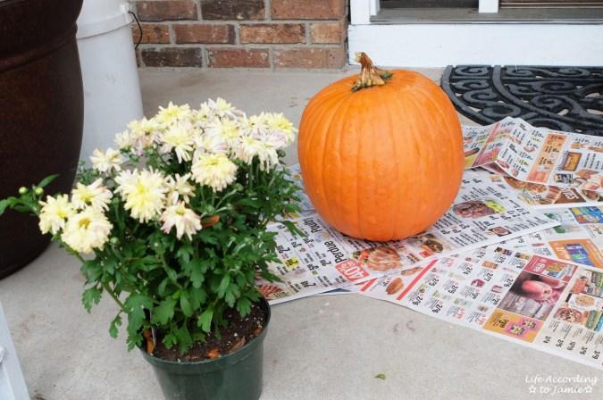 Pumpkin + Mums